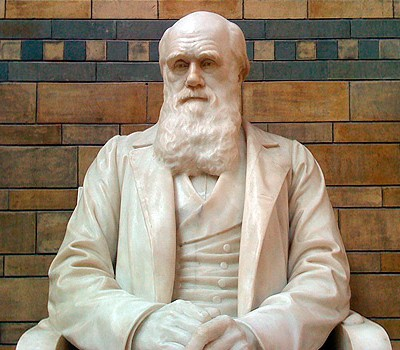 Charles Darwin at the Natural History Museum
